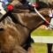 horseracing_post