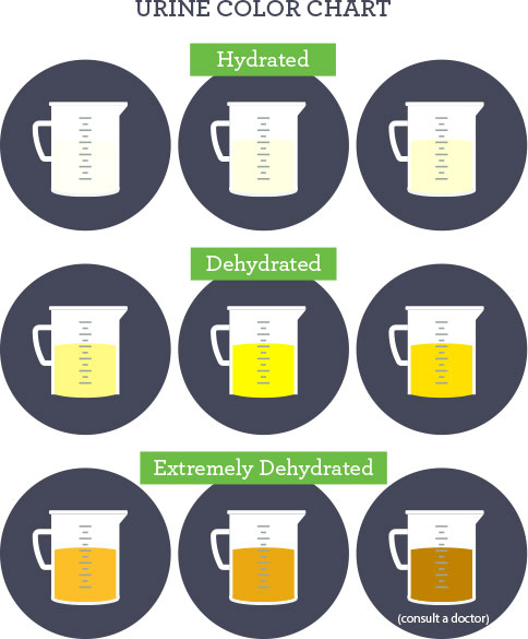 nutrition-urine-color-chart