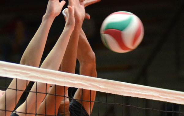 Max holt volleyball doping sanction